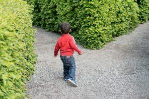Los dos caminos del psicólogo
